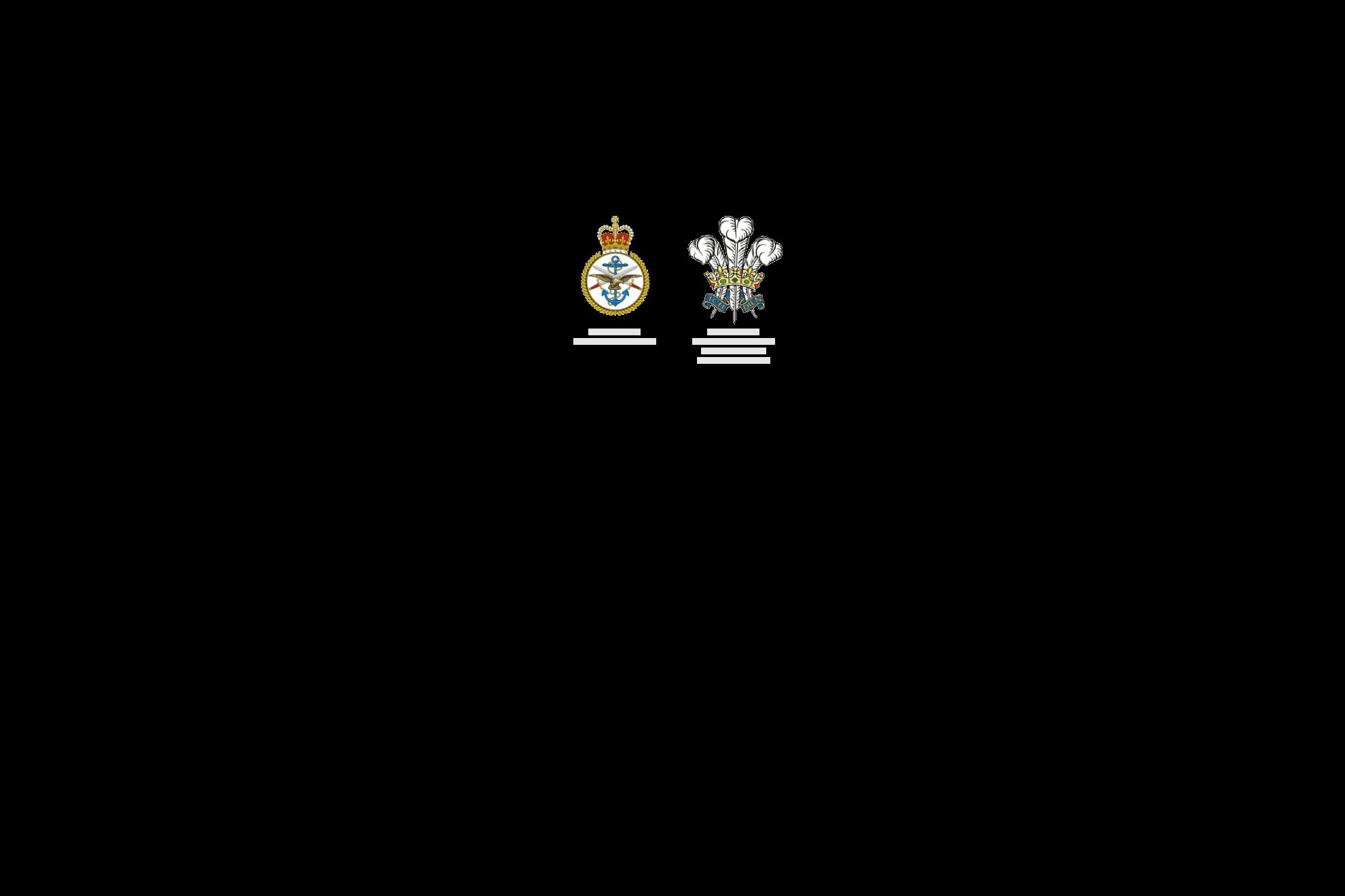 AM_Logo_Qinetiq